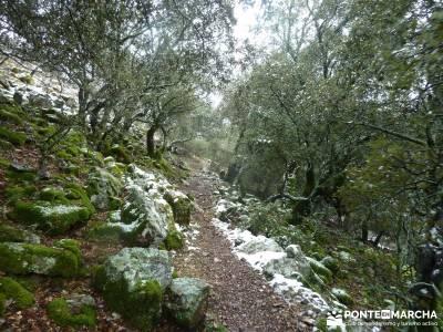 Pico Rocigalgo;Cascada Chorro,Cabañeros; fin de año montañas senda del oso nacimiento del rio mun